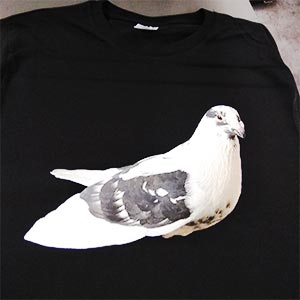 paloma-impresa-en-camiseta-negra